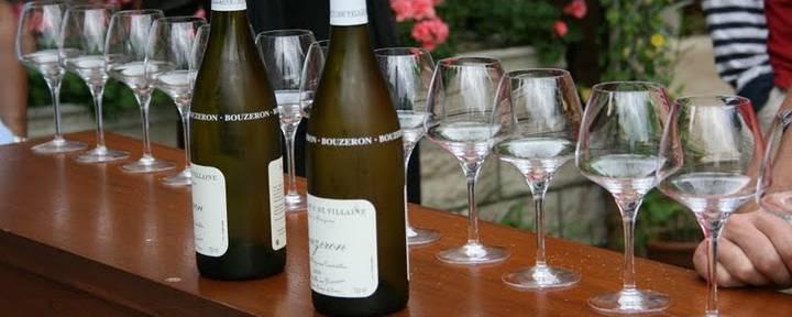 Dégustation Vins Côte Chalonnaise - © Office de Tourisme