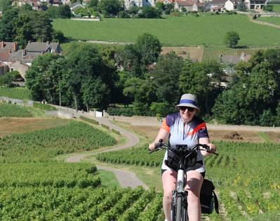Vignobles de la Côte Chalonnaise