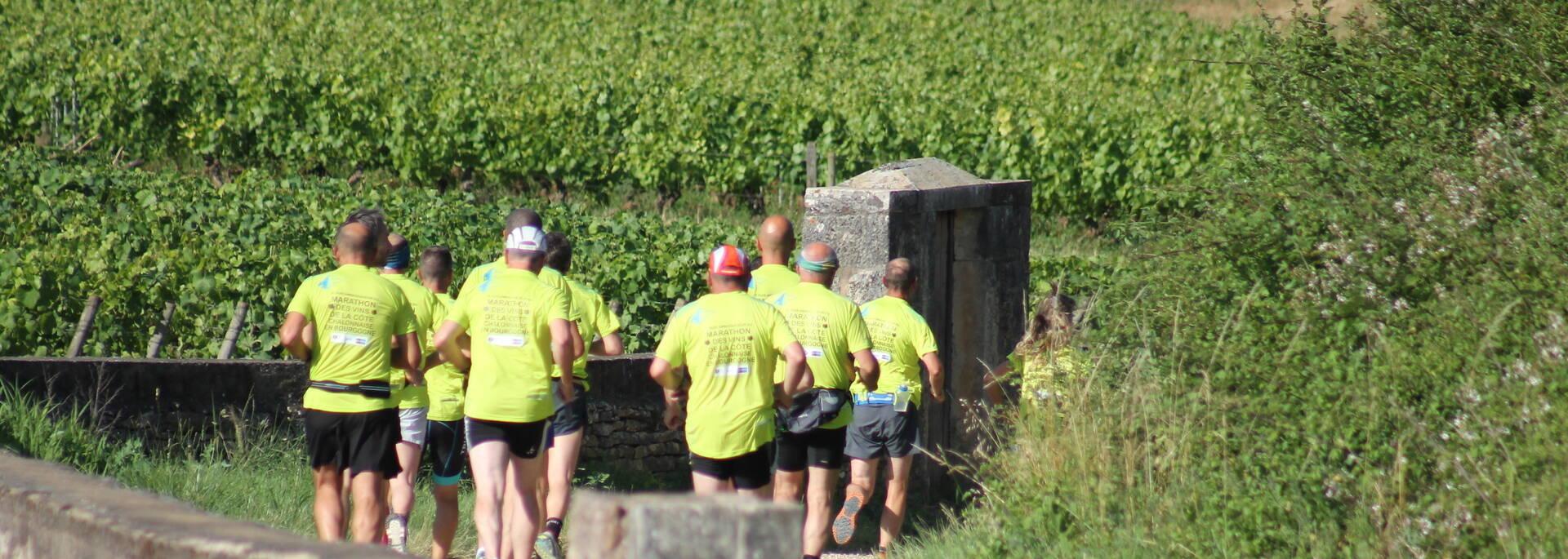 Marathon des Vins de la Côtes Chalonnaise - © Office de Tourisme