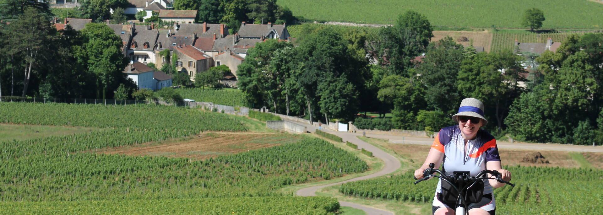 Vignes Mercurey - © Office de Tourisme