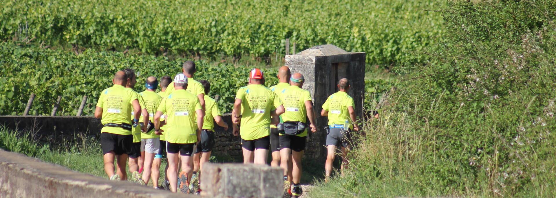 Marathon des vins de la côte Chalonnaise - © Office de Tourisme