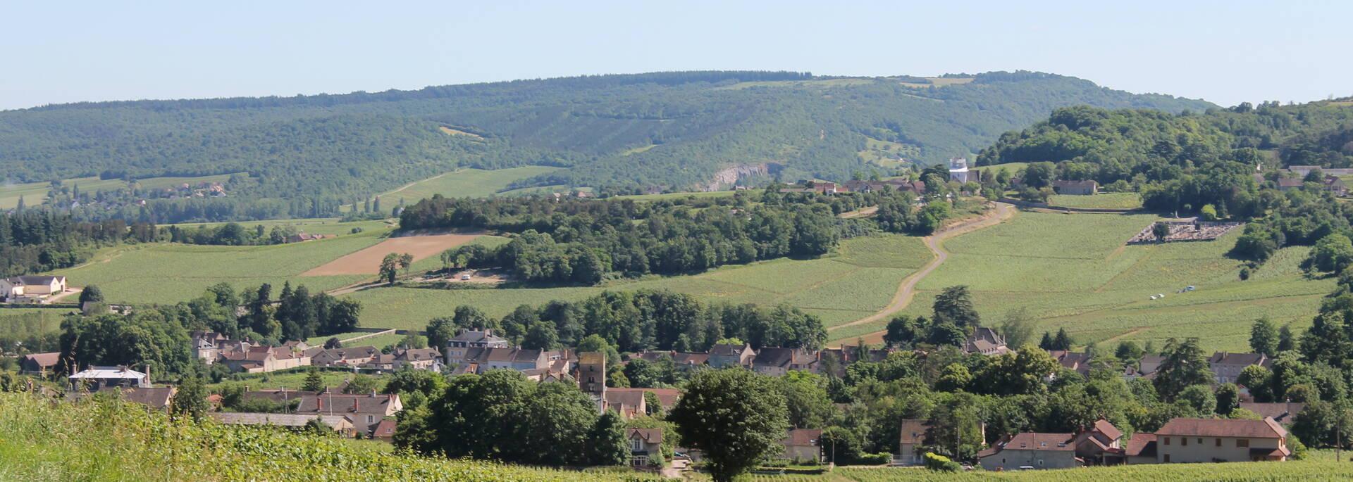 Vallée des Vaux, côté Chalonnaise - © Office de Tourisme