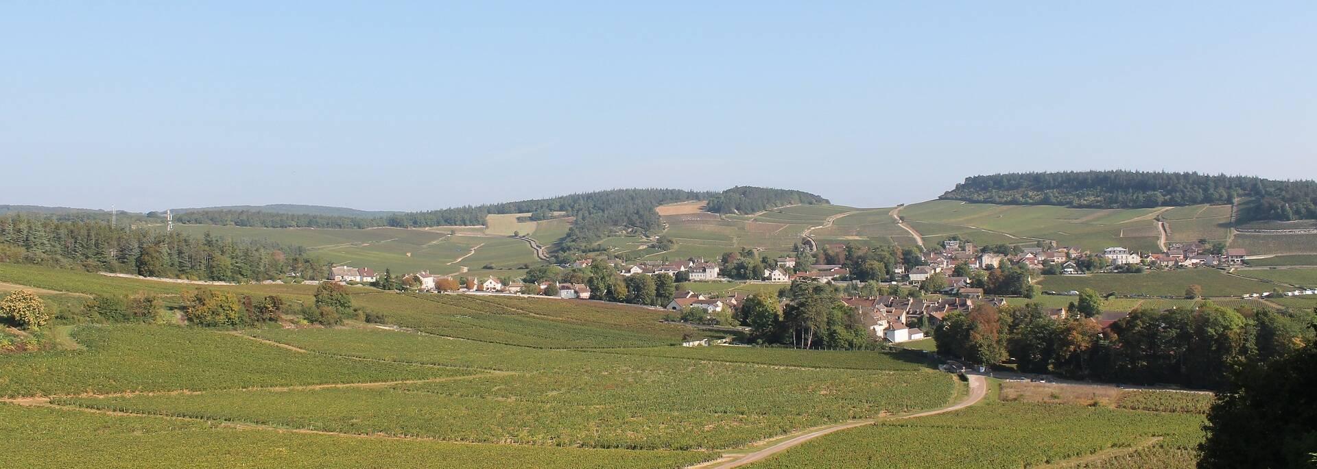 Village viticole @Office de Tourisme