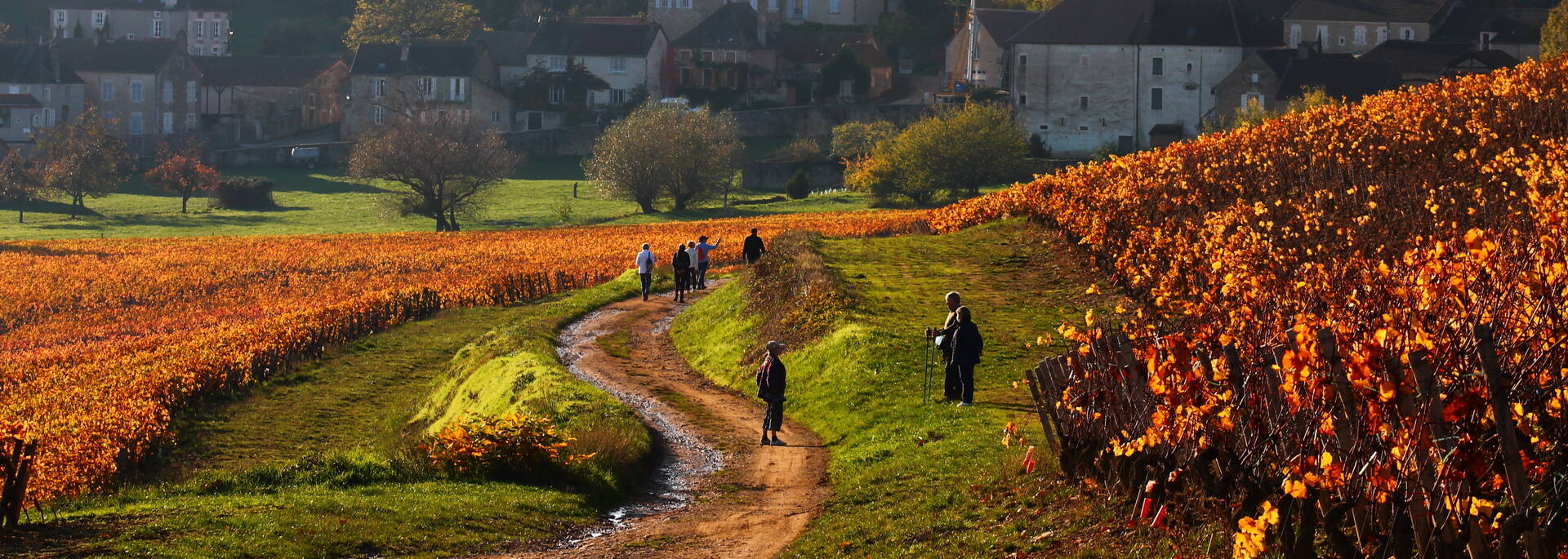 Randonnée Givry Russilly Automne