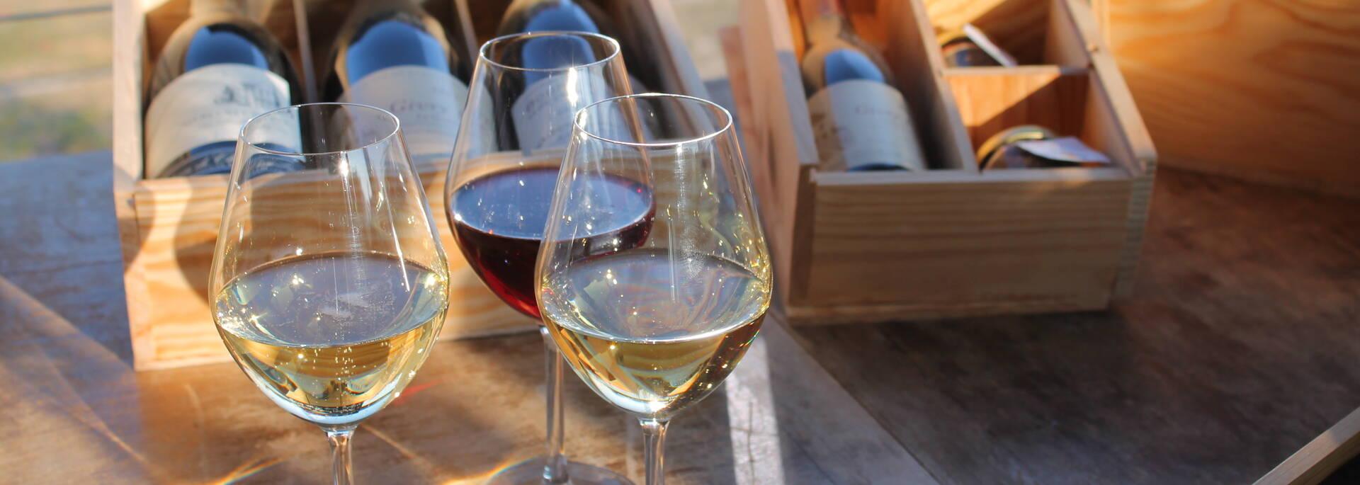 Dégustation à la Maison des Vins de la Côte Chalonnaise
