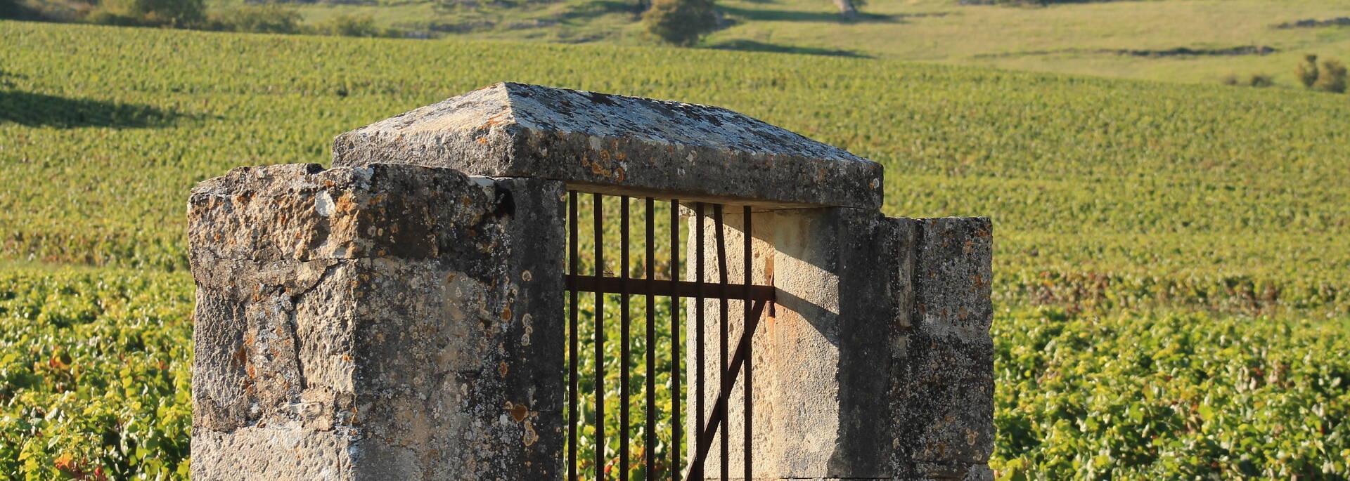 Entrée clos viticole Givry