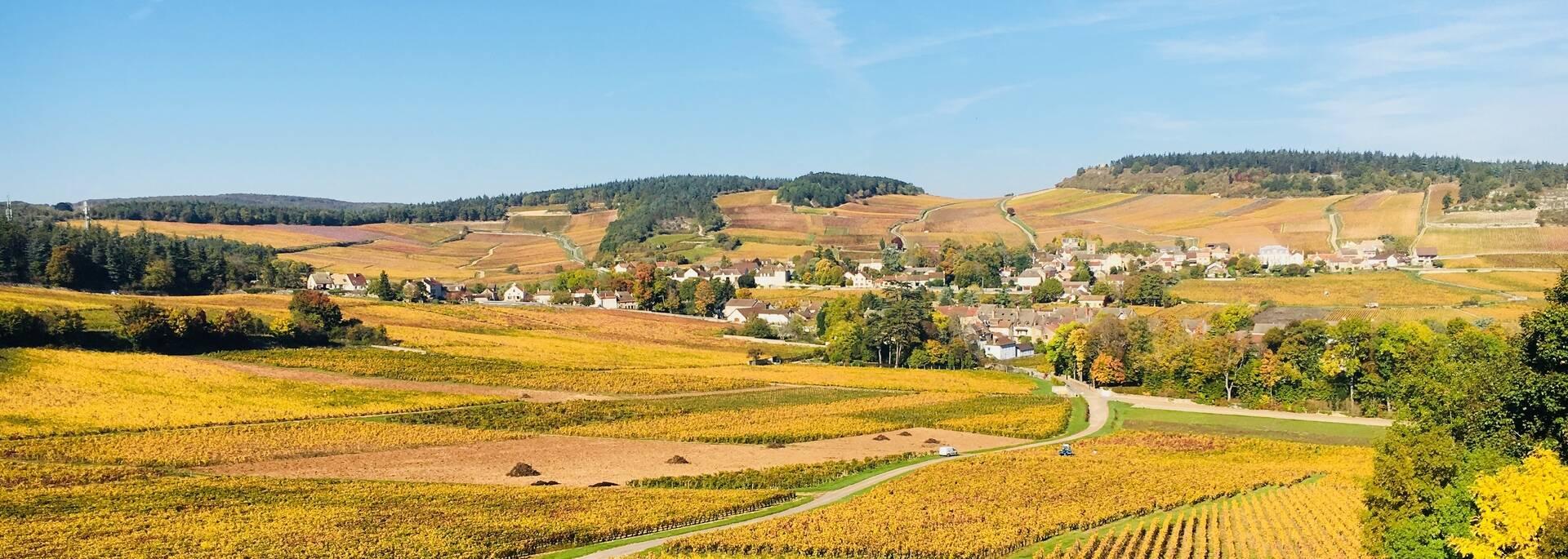 Route des Vins Mercurey